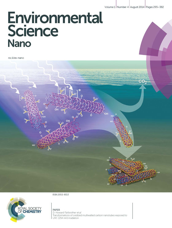 CNT_aggregates-cover-1